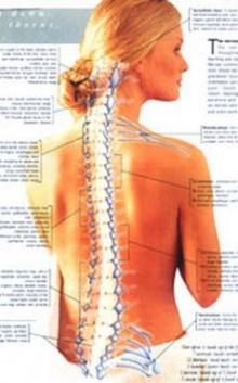 การทำร้ายกระดูกสันหลัง