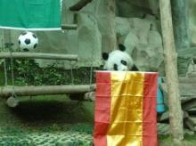 หลินปิงทายสเปนคว้าแชมยูโร2012