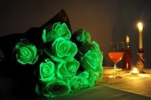 สวยแปลก! ดอกกุหลาบ(จริง)เรืองแสง