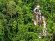 ลุ้นผืนป่า แก่งกระจาน เป็นมรดกโลก ก.ค.นี้ !