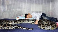อึ้ง!! เลี้ยงงูไว้เป็นเพื่อนลูก!!