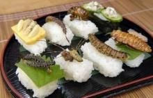 ยูเอ็น กระตุ้น ชาวโลกกินแมลงสู้ภัยหิว