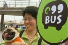 รถโดยสารสาธารณะเพื่อสัตว์เลี้ยงในฮ่องกง