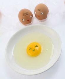 เรื่อง ไข่ ๆ ....กินแค่ไหนถึงจะพอดี