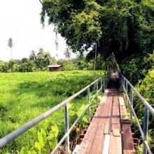 5 Unseen สวนป่ากลางเมือง