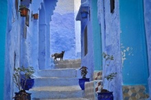 เชฟชาอูน เมืองสีฟ้าแห่งโมร็อกโก