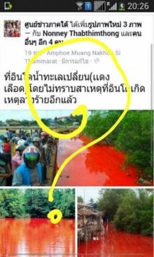 แชร์ว่อน ภาพน้ำทะเลสีเลือด ชี้ไม่ใช่ลางร้าย แต่มาจาก 2 สาเหตุ