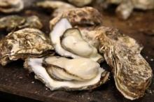 """เตือนภัย! การที่เรากิน """"หอยนางรม"""" ใหญ่ๆ แบบนี้เข้าไป มันเป็นอันตรายที่คุณคาดไม่ถึง"""
