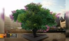 แปลกแต่จริง! ต้นไม้ประหลาดออกผลได้ 40 ชนิด