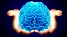 6 วายร้ายทำลายสมอง