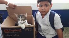 น่ารักอ่ะ!! เมื่อครูจับได้ว่านร.เอาแมวมาเรียนด้วยถ้าได้รู้เหตุผลจะยิ่งรัก!