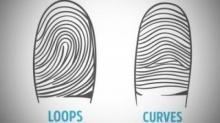 ลายนิ้วมือแต่ละแบบสามารถบอกได้ ว่าคุณเป็นคนยังไง?