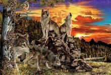 ภาพปริศนา : หมาป่า