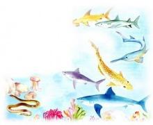 ขำขัน : ปลาอะไร