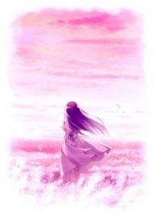 ● สายลมสีชมพู ●