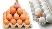 จะกิน ไข่ไก่ หรือ ไข่เป็ด ดี ?
