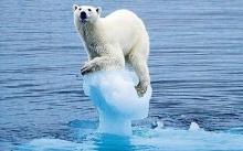 5 ไอเดียหลุดโลกในการแก้ปัญหาโลกร้อน