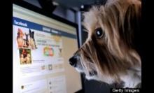 10% ของผู้ใช้เฟซบุค ไม่ใช่คน แต่เป็นสัตว์เลี้ยง เช่น สุนัข แมว ม้า