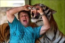 ทำได้ไง หนุ่มบราซิลฝึกเสือโคร่งเชื่องเป็นแมว