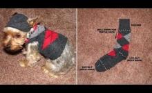 DIY:เสื้้อสเวตเตอร์Hoodyน้องหมา