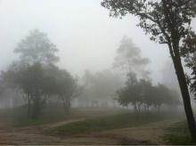 เที่ยวหน้าฝน ยลลมหนาวที่อุทยานแห่งชาติภูเรือ
