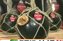 ญี่ปุ่นประมูลแตงโมเปลือกดำ 3.5 แสนเยน