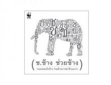 ช.ช้าง หายไป สื่อทั่วไทยออกตามหา