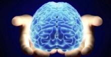เด็ดสุดๆ !! วิธีดูแล สมอง ให้สดใส ลดเสี่ยงเป็น อัลไซเมอร์