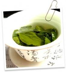 ล้างพิษด้วยชาเขียว