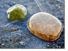 ก้อนหินด่าคน