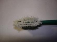 เตือนภัยอันตรายจากแปรงสีฟันเก่า บ่อเกิดโรคร้ายคาดไม่ถึง!!
