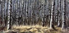 ภาพปริศนา : ป่า