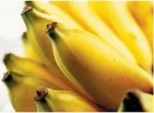 ♣ กล้วยน้ำว้า บำรุงผิว ดับกลิ่นปาก ♣