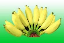 กล้วย...อาหารดีใกล้มือ