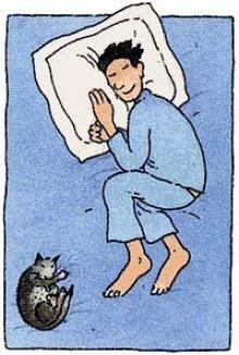 คุณเคยสังเกตุหรือไม่ว่าทุกคำคืน คุณนอนท่าไหน....