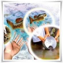 ปล่อยปลาแต่ละชนิดมีความหมายอย่างไร