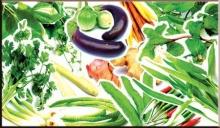ความเชื่อเกี่ยวกับพืชผักพื้นบ้านด้านประเพณี พิธีกรรม
