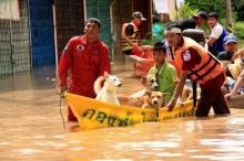รวมบัญชีช่วยผู้ประสบภัยน้ำท่วม 54