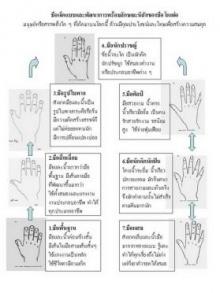 ลักษณะ มือ 7 ประเภท ของมนุษย์