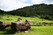 เกาะคังฮวาโด เกาะแห่งสุสานยุคก่อนประวัติศาสตร์