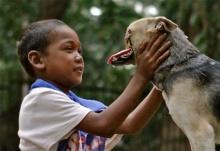 Kabang หมาฮีโร่ เสียสละจมูกกับกรามบน ช่วยชีวิตเด็กสาว