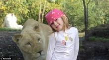 จะเกิดอะไรขึ้น ถ้าคุณต้องเผชิญหน้ากับสิงโตเจ้าป่าแบบจังๆ