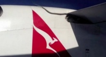 ผงะ! เจองูเหลือมเกาะบนปีกเครื่องบิน