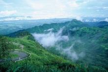น่าห่วง! ประเทศไทยเหลือพื้นที่ป่า 108 ล้านไร่