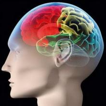 ออกกำลังสมอง เพิ่มคุณภาพให้ชีวิต