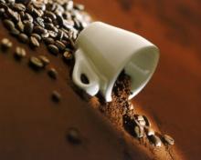 ระดับรสชาติของการคั่วเมล็ดกาแฟ