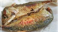 ปลาทู2ตัวชะลอแก่..จริงหรือ?