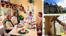 10 โรงแรมที่แปลกที่สุดในโลก!!!