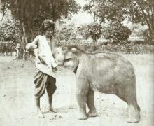 เคยเห็นกันหรือยัง!?  ภาพประวัติศาสตร์.. ลูกช้างดูดนมแม่ลูกอ่อน