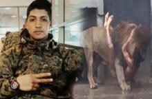 รู้จัก Franco Ferrada ชายผู้กระโดดให้สิงโตกิน แท้จริงแล้ว เขาอาจเป็น 'คนน่าสงสาร'